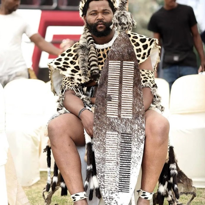 What you didn't know about Sjava