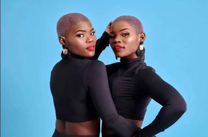 Qwabe Twins Viggy and Virginia rumoured to be dating each other