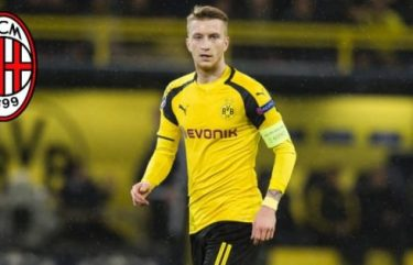 Marco Reus Favorite Brand Favorite Things Food Movie Show Song Place and Animal Favorite Drink