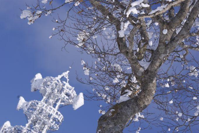 2012年の野沢旅行 【2012年1月7日~1月9日】