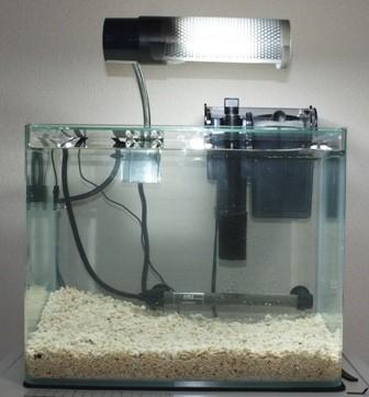 ライトアップ水槽