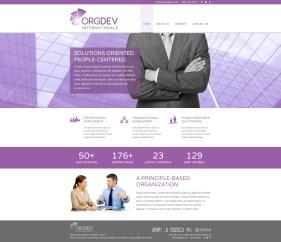 website-orgdev