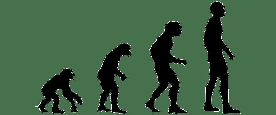 evolución humana-hombre01