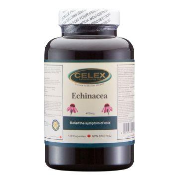 Celex Echinacea