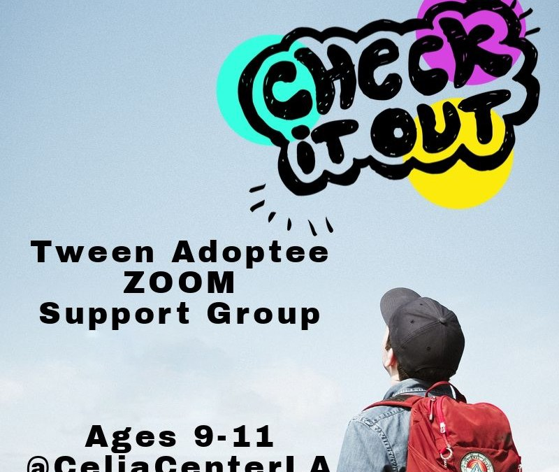 Tween Adopt Salon Support Group September 11, 2020 via ZOOM