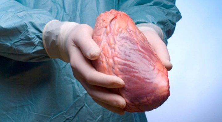 Doença Celíaca e cardiopatias pediátrica