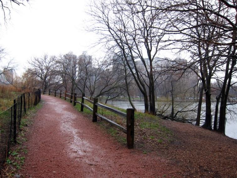 Sodden path