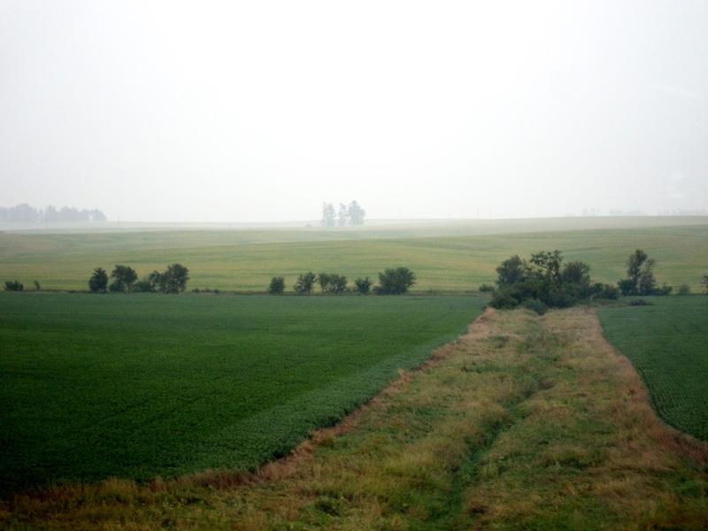 A swath of grass between fields.