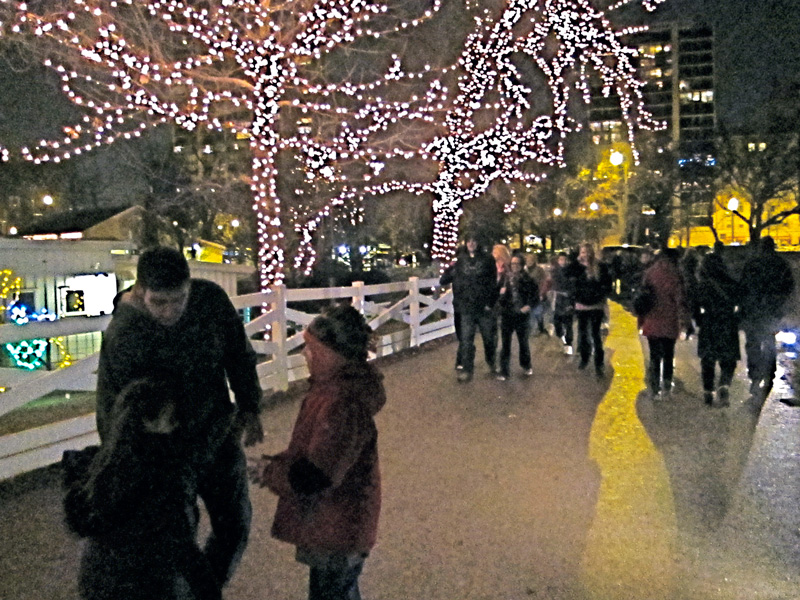 Father and daughters at the Zoo Lights (Chicago), © 2013 Celia Her City