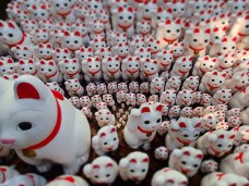 The Lucky Cat Army