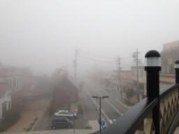 Eerie mist