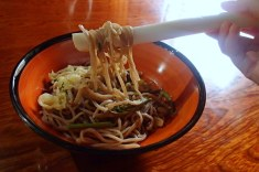 Soba eaten with long onion