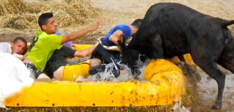 Toro piscine at the Féria