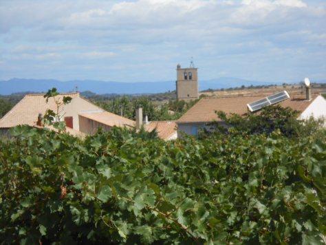 Languedoc wine village