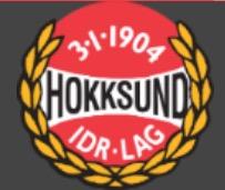 Hokksund Håndball J02