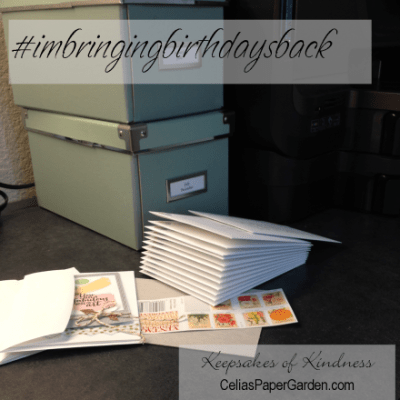 #imbringingbirthdaysback Campaign: What Is It?
