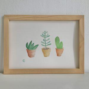 Illustration aquarelle cactus et succulentes