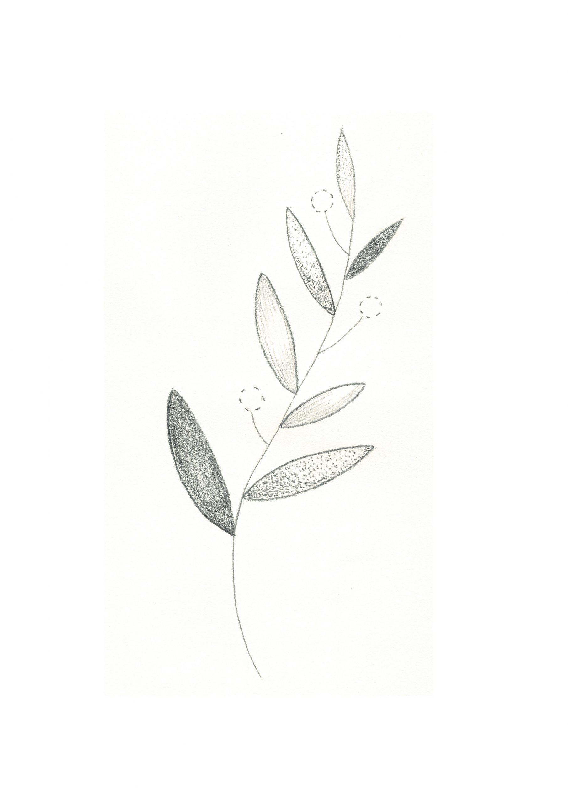 Dessin au crayon d'une plante imaginaire
