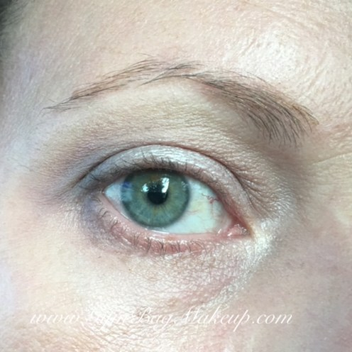 (no liner or mascara because I had some eye irritation that was not caused by the eye shadow in question. Dang expired mascara.) From the Avant Pop (AP) palette: 6 - as a base, to blend and as a brow bone highlight. 2- transition shade. 1 - lid shade. 5 - outer corner. L'Oreal Brow Plumping Mascara.