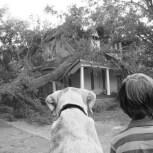 boy & dog 2b