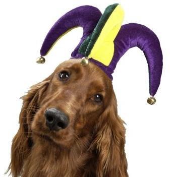 Dog God Jester
