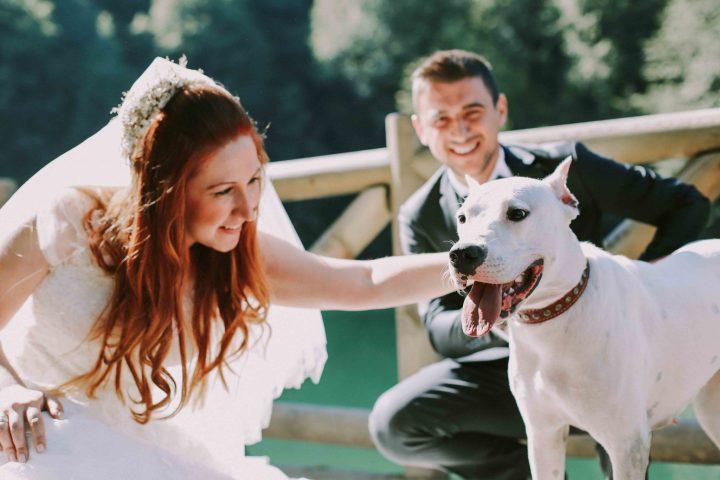 düğün fotoğrafçısı bolu