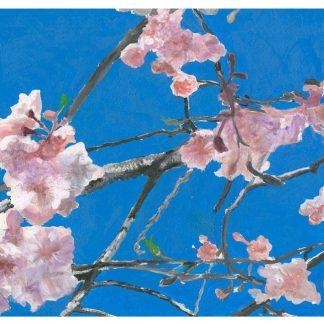 Flora Series I - Cherry Blossom I ©CEMarqua