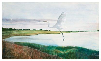 Great Salt Marsh I, Egret ©CEMarqua