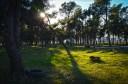 Lijepe prizore pokvari poneka guma i drugi otpad u parku