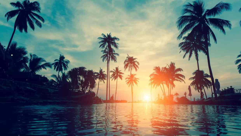 dive vacations