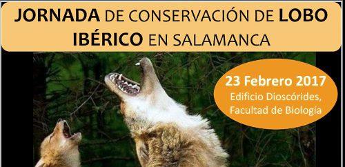 Jornada de conservación del lobo ibérico en Salamanca