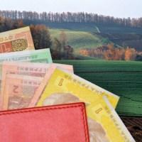 Мораторій на продаж сільськогосподарської землі – це добро чи зло