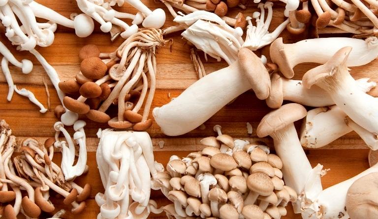 D'Artagnan_Organic_Mushrooms