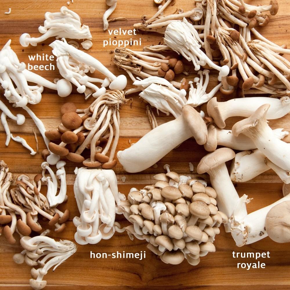 Organic-Mushrooms