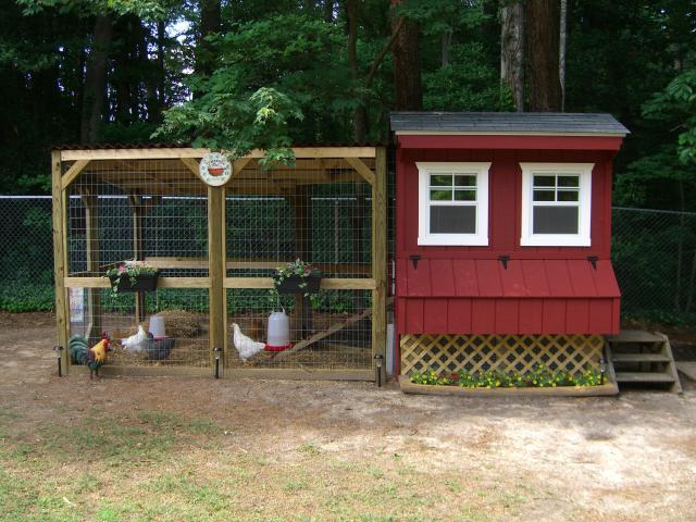 chicken coop.jpeg