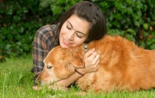Holidays and Pet Loss Grief
