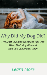 Why did my dog die? Answers to the 5 Top Questions Kids Ask