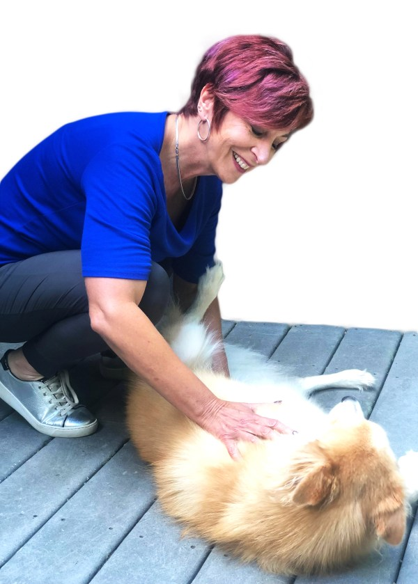 Balancing your pets chakra system during hospice