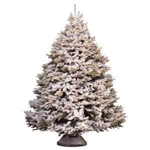 Artificial snow on tree