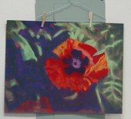 pastel workshop taught at az artist guild3