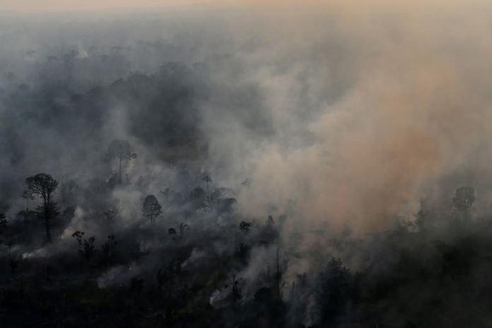 Amazônia em chamas