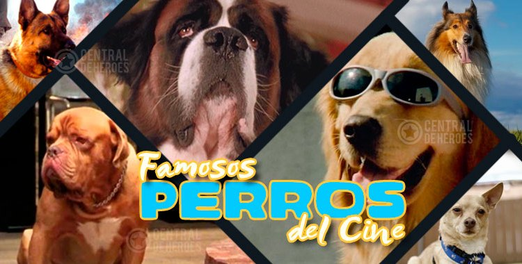 perros famosos del cine