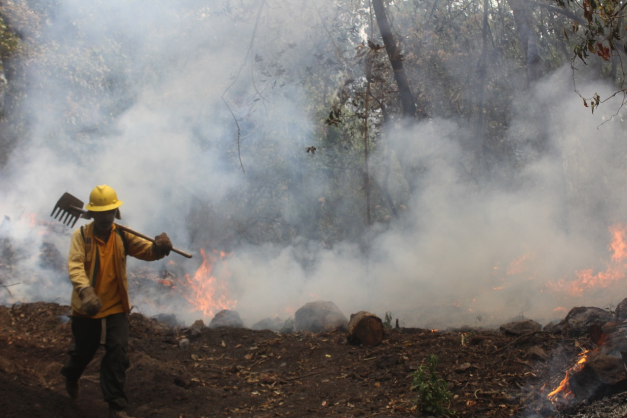 Los incendios forestales no dan tregua en Morelos.