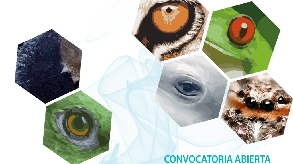 Lanza Centro de Investigaciones Biológicas convocatoria para muestra de cine y fotografía científica