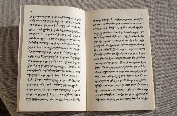 Livro em Hindi Tibetano