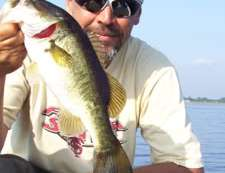 Lake Toho Bass Fishing Report May 20th 2010