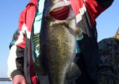 End of December 2010 Bass Fishing Report