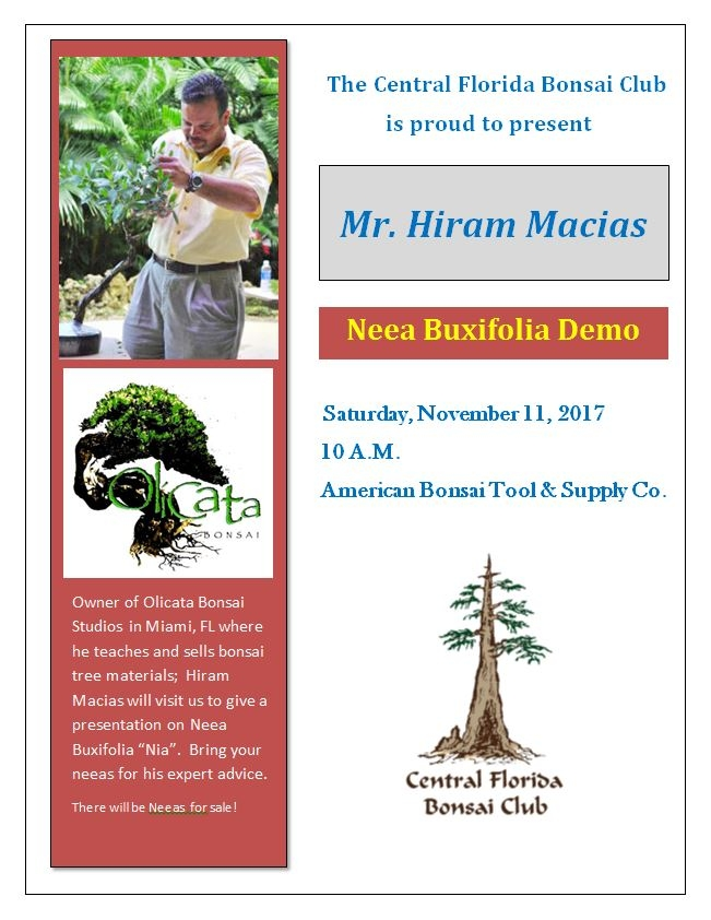 Orlando Archives Page 7 Of 7 Central Florida Bonsai Club