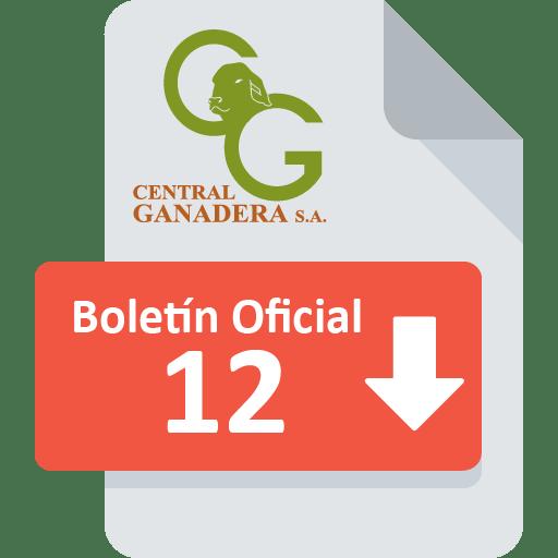 Boletín Oficial 12