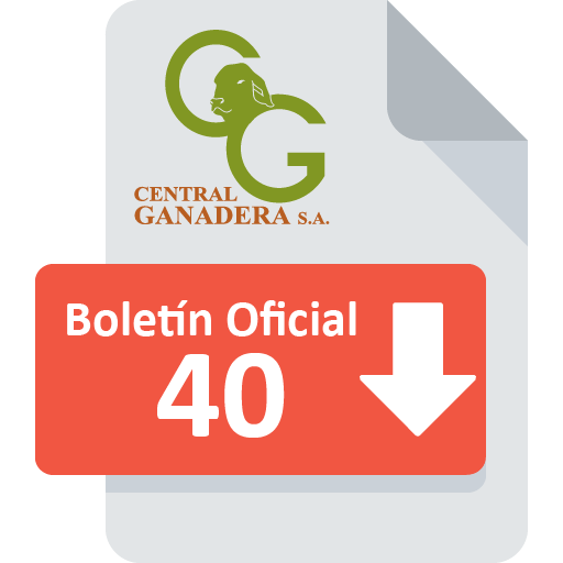 Boletín Oficial 40